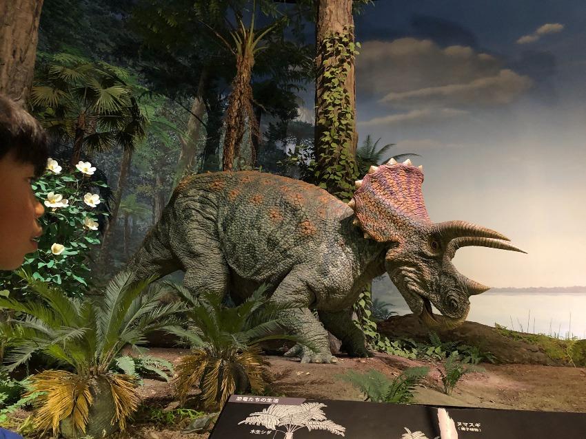 恐竜大好き