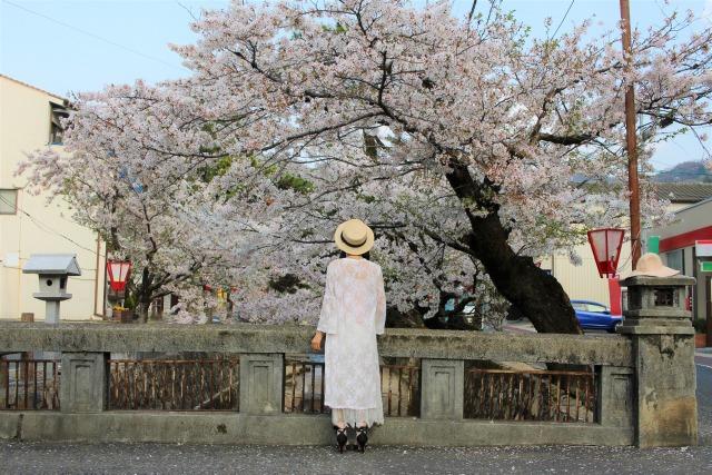 【週末】4/4.5 雨でも晴れでも笑って咲くわたしになる!